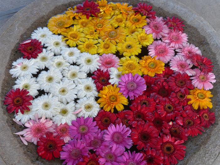 flower arrangement in Tamil Nadu