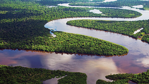 River meanders in the rainforest