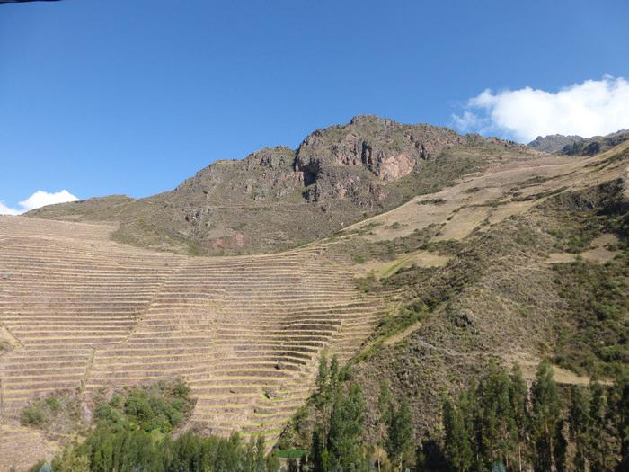 Inca Terraces at Pisac - Vegetarian Peru Adventures
