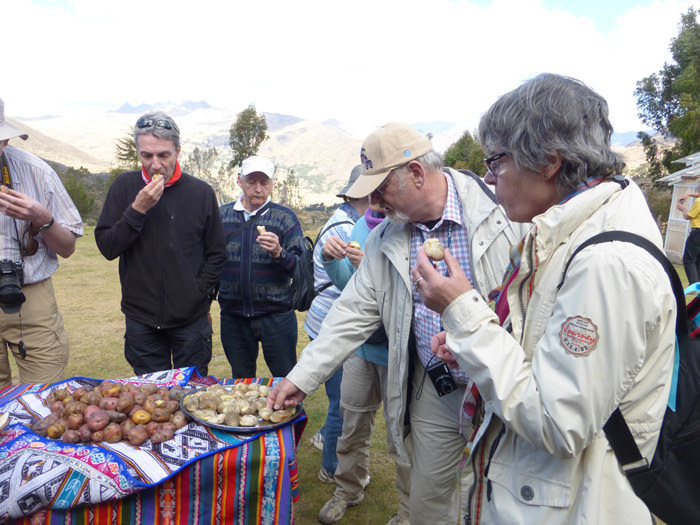 Pisac Potato Park - Vegetarian Peru Adventures